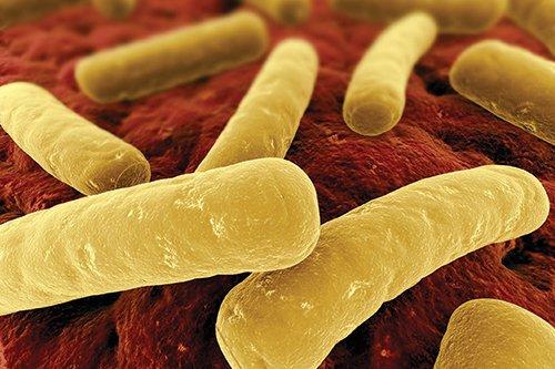 Clostridium-Difficile